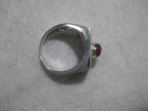 CRSM-003 (2)